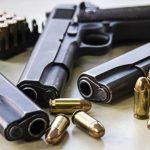 Gun Sanctuary